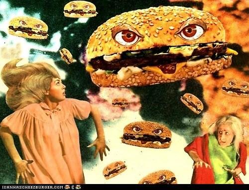Cheezburger Image 6866743808
