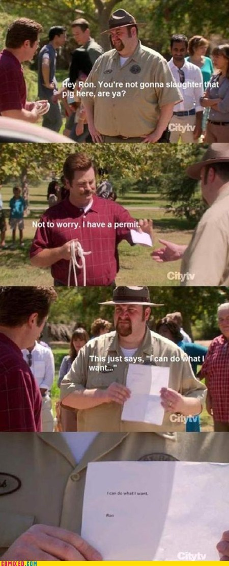 ron swanson,parks and rec,permit,pig,slaughter,TV
