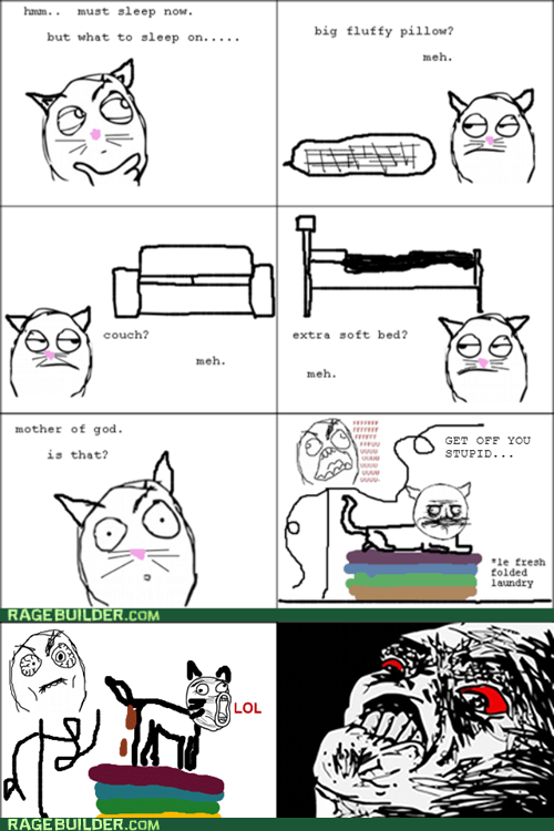 laundry clean clothes me gusta cat logic Cats - 6869617664
