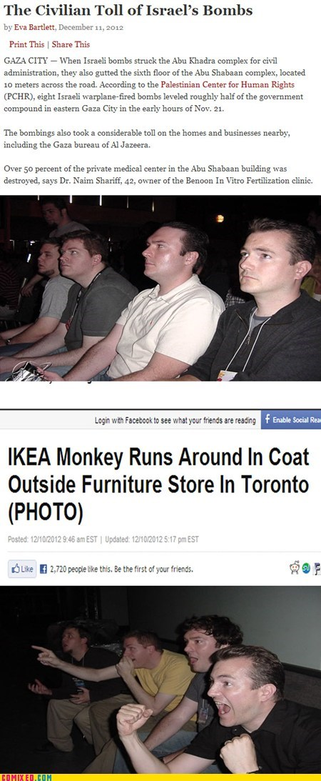 4koma news ikea humanity monkey Israel middle east - 6870145024