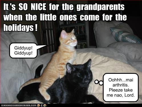 ride,arthritis,annoying,kids,captions,giddyup,hyper,Grandpa,grandparents,Cats