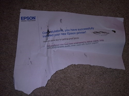 printer installation epson printer monday thru friday g rated - 6870291200