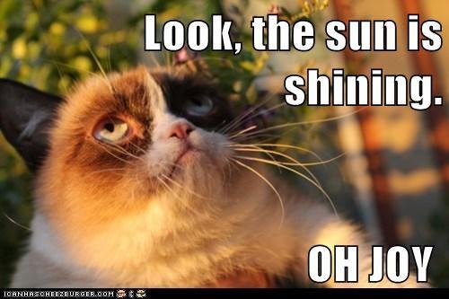 Look, the sun is shining.                                                       OH JOY