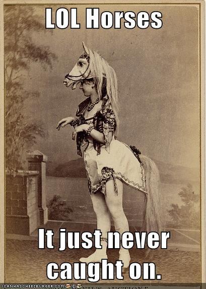 lols,internet,horses