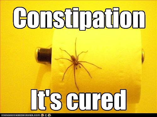 scary,constipation,better,spider,pooping,cured
