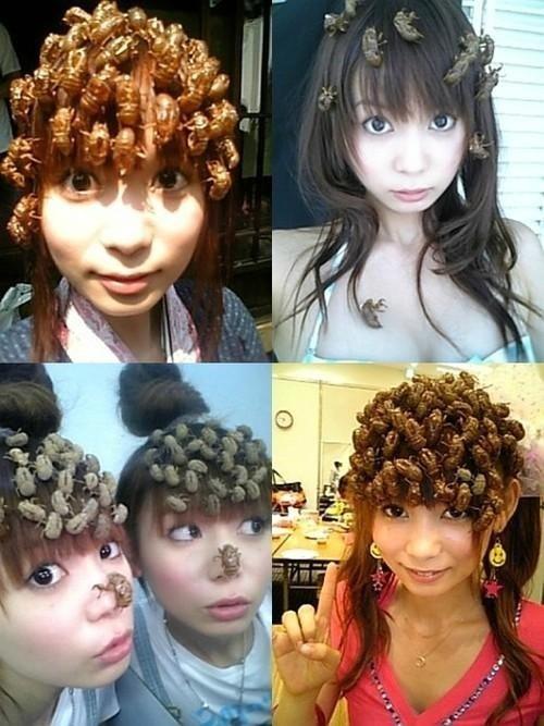 hair,wtf,bees