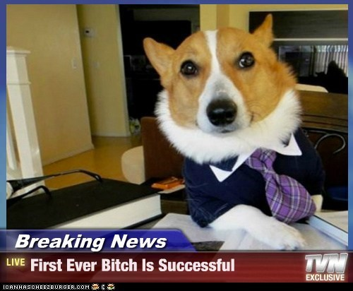 Breaking News - First Ever Bitch Is Successful