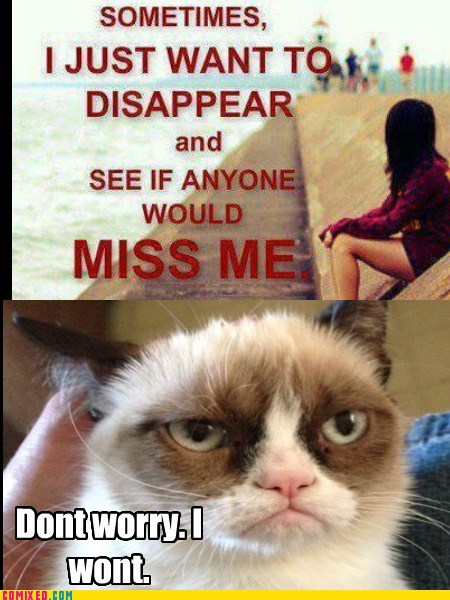disappear,emo kids,Grumpy Cat,tard