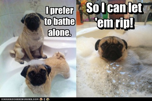 I prefer to bathe alone. So I can let 'em rip! So I can let 'em rip!