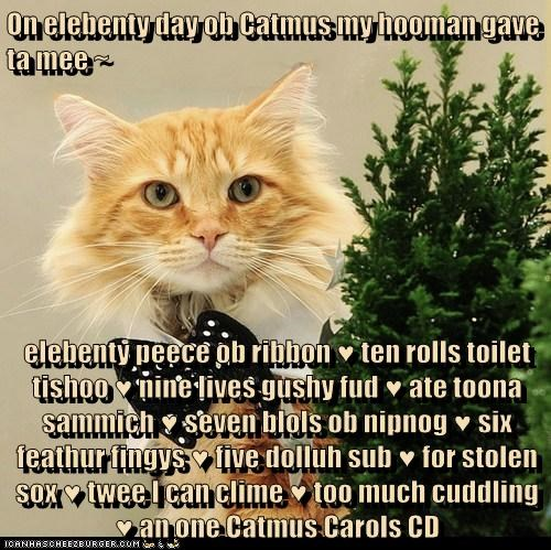 On elebenty day ob Catmus my hooman gave ta mee ~ elebenty peece ob ribbon ♥ ten rolls toilet tishoo ♥ nine lives gushy fud ♥ ate toona sammich ♥ seven blols ob nipnog ♥ six feathur fingys ♥ five dolluh sub ♥ for stolen sox ♥ twee I can clime ♥ too much