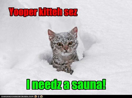 Yooper kitteh sez I needz a sauna!