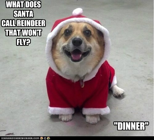 """WHAT DOES SANTA CALL REINDEER THAT WON'T FLY? """"DINNER"""""""