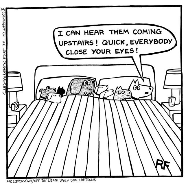 dogs funny comics animal comics humans outsmart web comics - 6874117