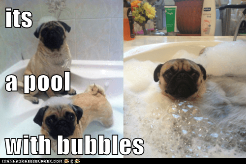 its  a pool with bubbles