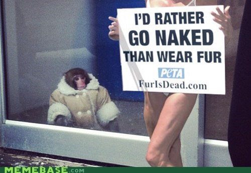 fur,peta,ikea monkey