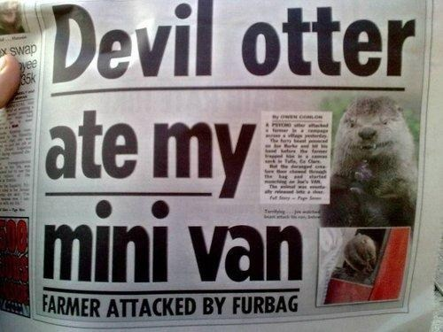 mini van,evil,otter,newspaper