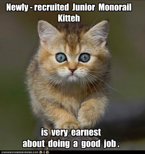 Newly - recruited Junior Monorail Kitteh is very earnest about doing a good job .