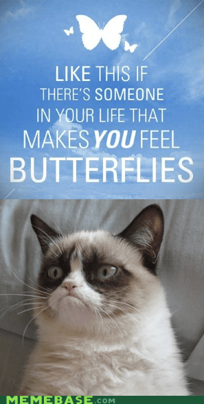 nope butterflies emo Grumpy Cat - 6874784768