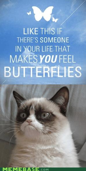 nope butterflies emo Grumpy Cat - 6874784768