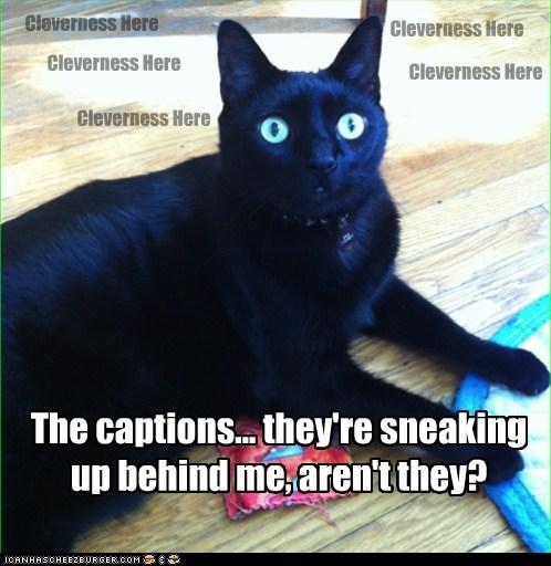 creepy captions meta Cats - 6875090176