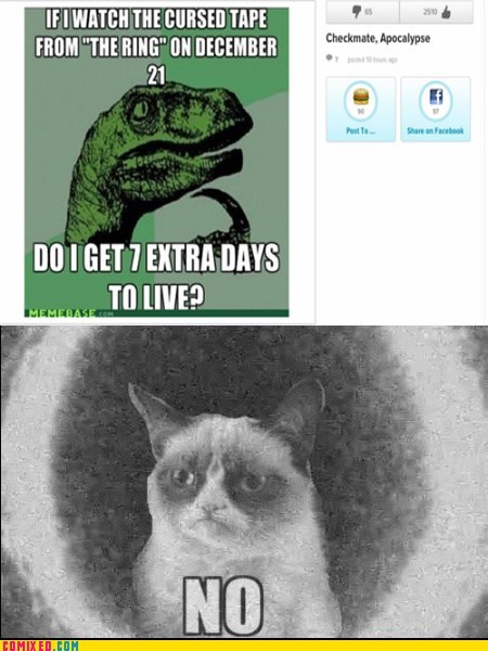Reframe,Movie,philosoraptor,the ring,no,Grumpy Cat,mayan apocalypse