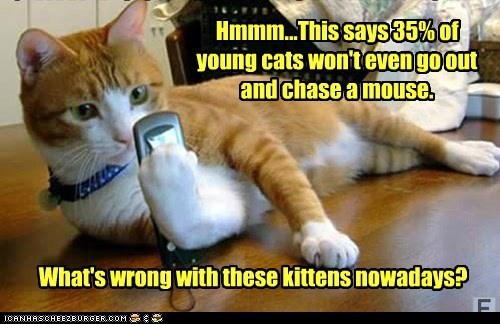 Hmmm...This says 35% of young cats won't even go out and chase a mouse. What's wrong with these kittens nowadays?