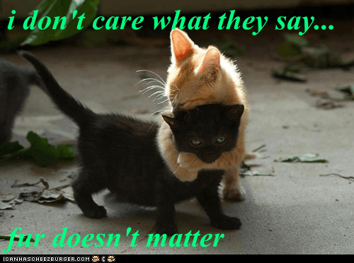 i don't care what they say...  fur doesn't matter