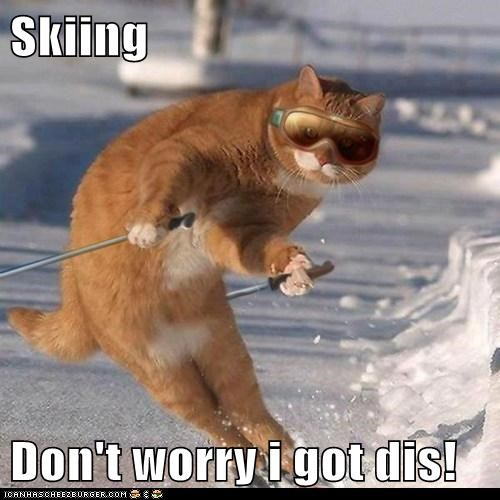 Skiing  Don't worry i got dis!