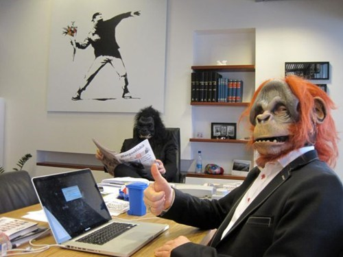 monkeys,Office,masks