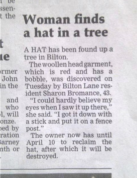 news headline slow news day tree hat fail nation g rated