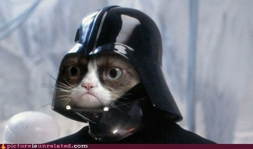 shopped pixels,Movie,tard the grumpy cat,darth vader