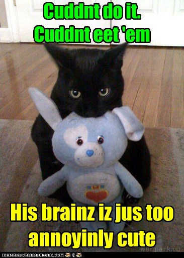 brains,stuffed animal,captions,eat,cute,friend,Cats