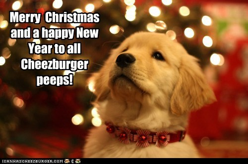 Merry Christmas and a happy New Year to all Cheezburger peeps!