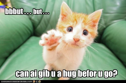 captions go leave Cats hug - 6876738560