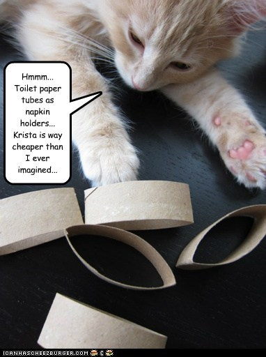 Hmmm... Toilet paper tubes as napkin holders... Krista is way cheaper than I ever imagined...