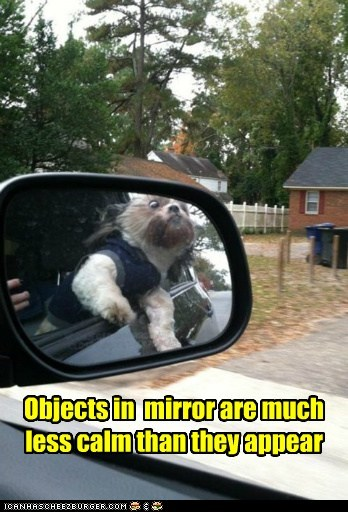 Objects in mirror are much less calm than they appear