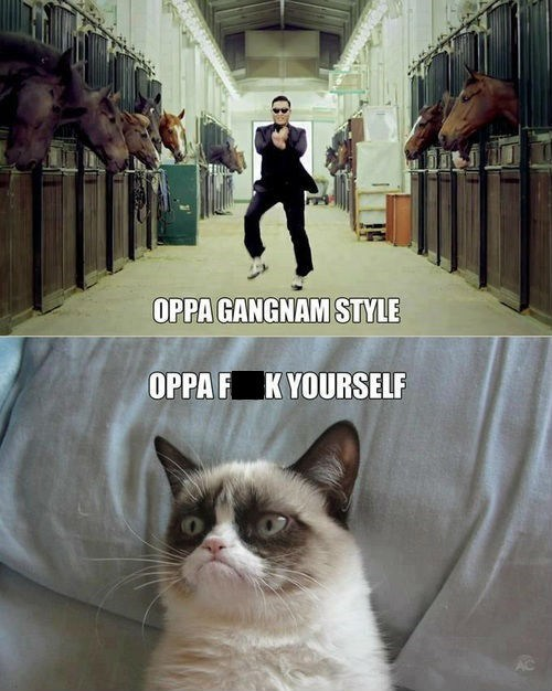 gangnam style Grumpy Cat Music FAILS Hall of Fame best of week - 6877511168