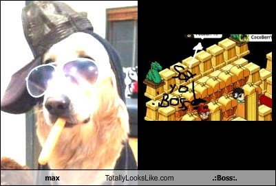 max Totally Looks Like .:Boss:.