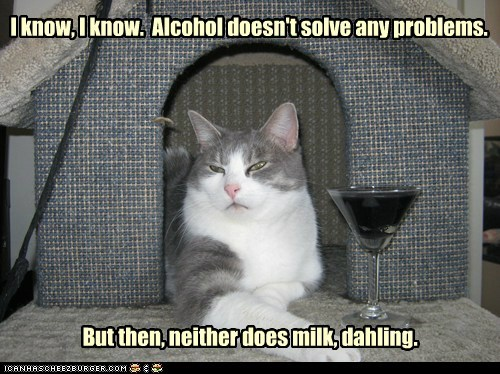 alcohol martini booze milk captions problems Cats