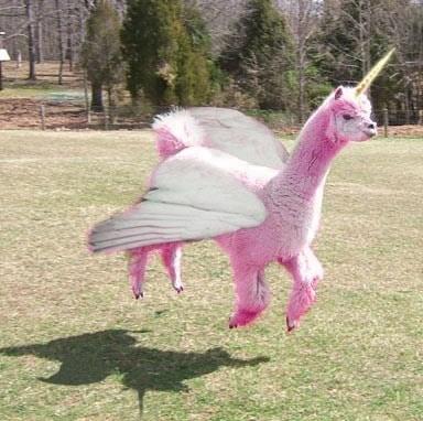 unicorn llama shopped pixels pegasus - 6878172160