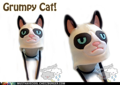 face ears Grumpy Cat hat hats tard - 6878869760