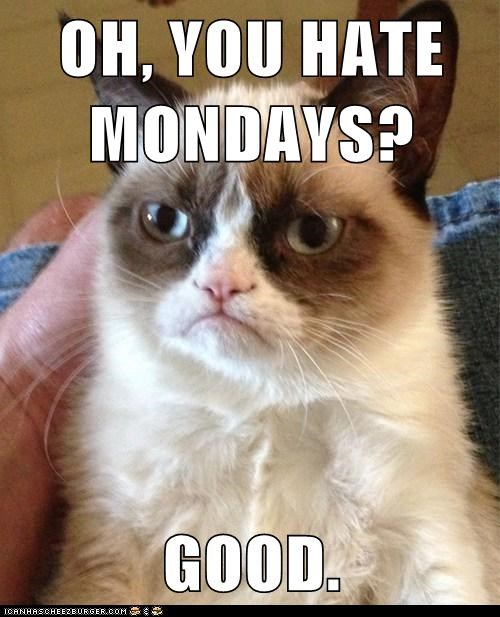 OH, YOU HATE MONDAYS?  GOOD.