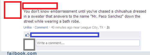 embarassment mr-paco-sanchez chihuahua failbook g rated - 6878974976