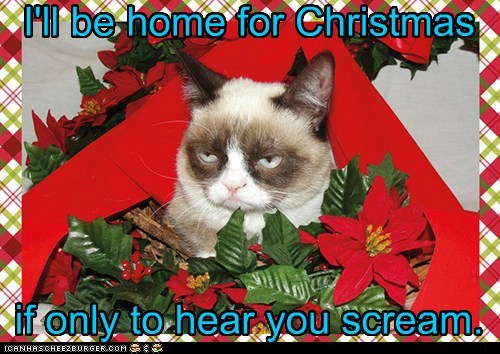 I'll be home for Christmas if only to hear you scream.