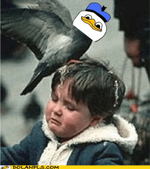 pigeon,kid,attack,happy friday,good luck,bird poop,IRL