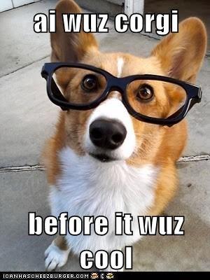 ai wuz corgi  before it wuz cool