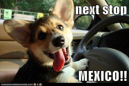 next stop  MEXICO!!
