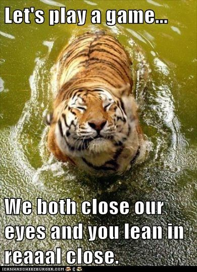 lean,closed eyes,tigers,play a game,close,trick,eating you