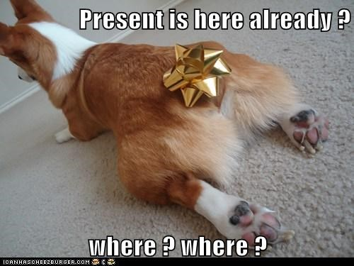 Present is here already ?   where ? where ?