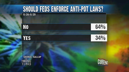 Should Feds Enforce Anti-Pot Laws?